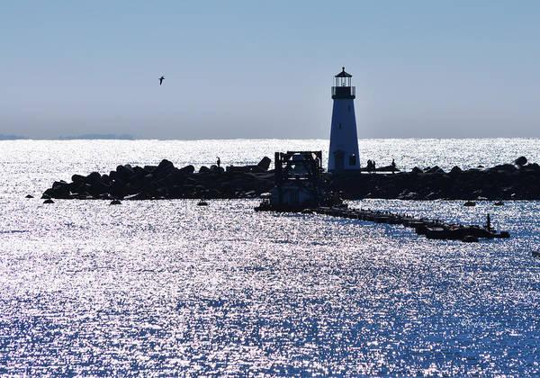Photograph - Santa Cruz Light House by Xueling Zou