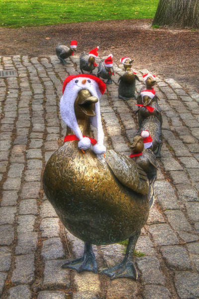 Photograph - Santa Ducks by Joann Vitali