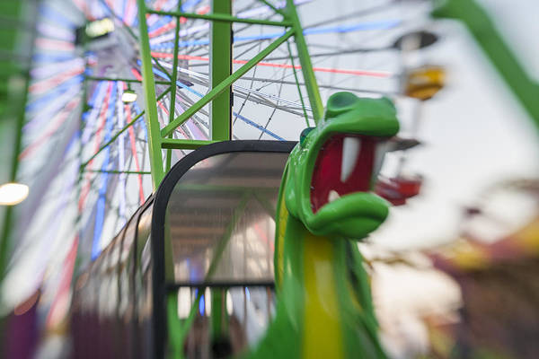 Photograph - Roar Green Dragon Ride by Scott Campbell