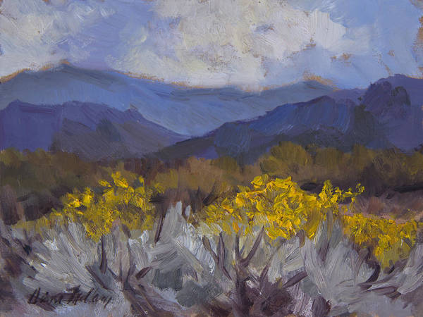 Wall Art - Painting - Santa Rosa Mountains And Desert Marigolds by Diane McClary
