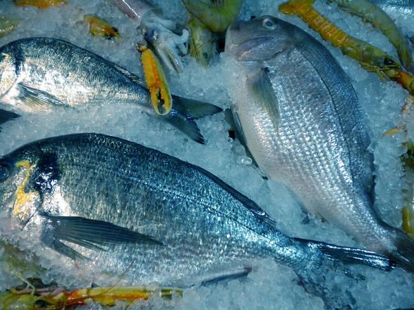 Photograph - Santorini  Island Fresh  Dorados by Colette V Hera  Guggenheim