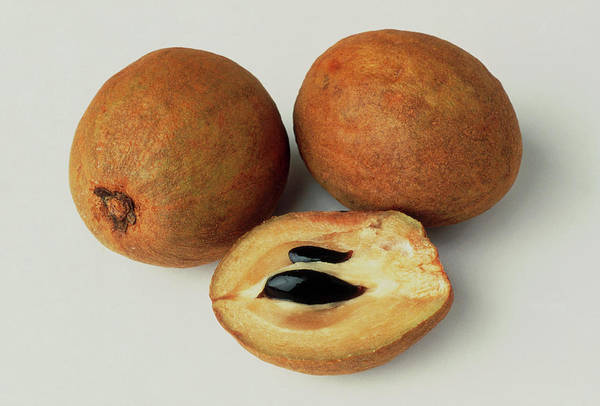 Foodstuff Photograph - Sapodilla Fruits by Th Foto-werbung/science Photo Library