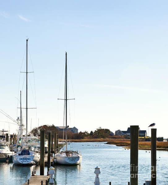 Photograph - Saquatucket River Harwich Port Cape Cod by Michelle Constantine