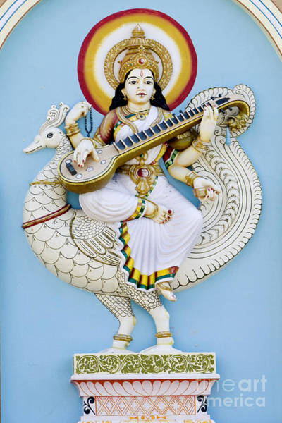 Hindu Goddess Wall Art - Photograph - Saraswati by Tim Gainey