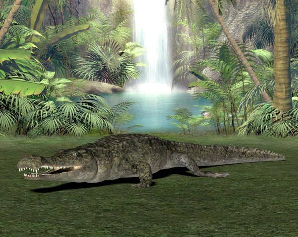 American Crocodile Photograph - Sarcosuchus Prehistoric Crocodile by Friedrich Saurer