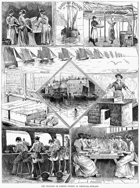 Painting - Sardine Fishery, 1880 by Granger