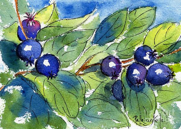 Painting - Saskatoon Berries by Pat Katz