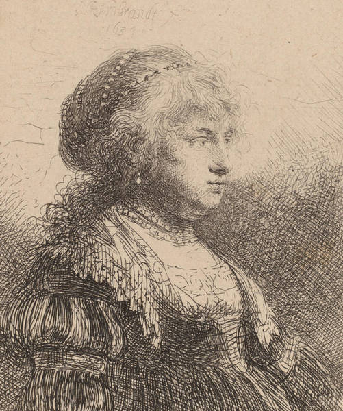 Adult Drawing - Saskia With Pearls In Her Hair by Rembrandt