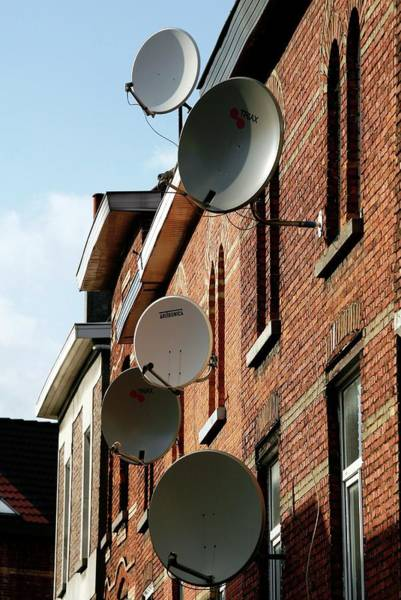 Satellite Dish Photograph - Satellite Dishes by Christophe Vander Eecken/reporters/science Photo Library