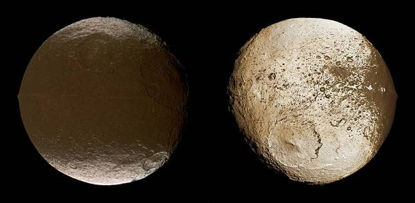 Hemisphere Wall Art - Photograph - Saturnian Moon Iapetus by Nasa/jpl/space Science Institute/science Photo Library