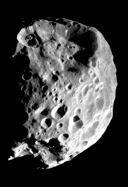 Flyby Photograph - Saturn's Moon Phoebe by Nasa/science Photo Library