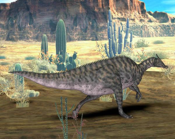 Paleozoology Wall Art - Photograph - Saurolophus Dinosaur by Friedrich Saurer