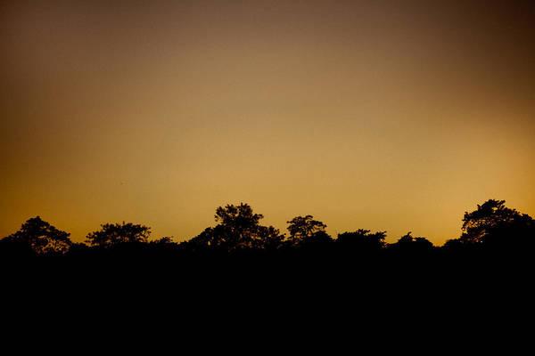 Wall Art - Photograph - Savanna At Sunset by Raimond Klavins
