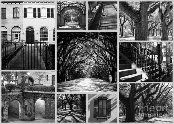 Photograph - Savannah Collage - Black And White by Carol Groenen