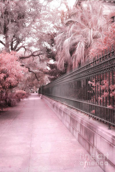 Street Scenes Photograph - Savannah Dreamy Pink Rod Iron Gate Fence Architecture Street With Palm Trees  by Kathy Fornal