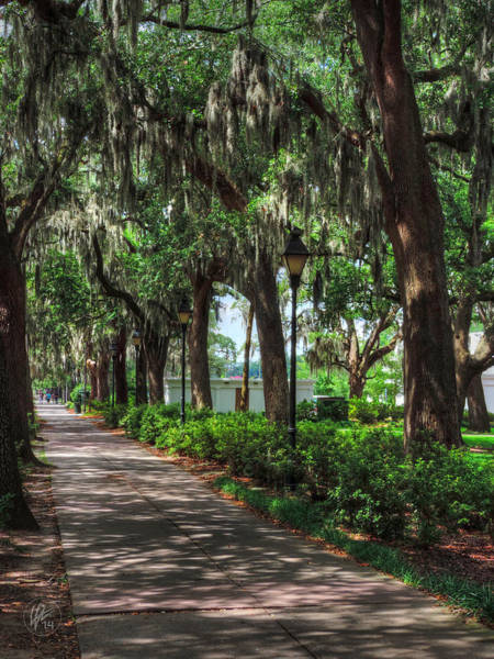 Photograph - Savannah - Forsyth Park 004 by Lance Vaughn