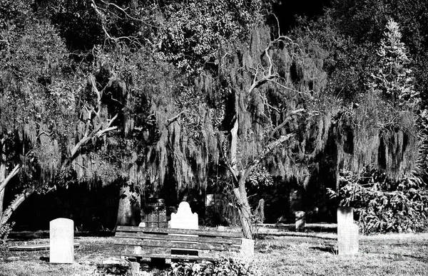 Photograph - Savannah Resting Place by John Rizzuto