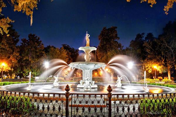 Photograph - Savannah Under Starlight by Renee Sullivan