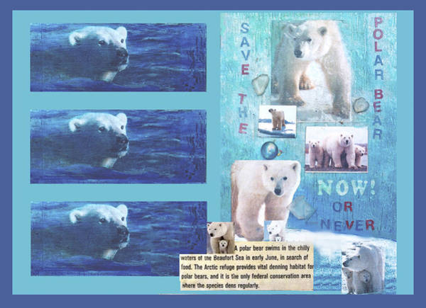 Mixed Media - Save The Polar Bear Now Or Never by Mary Ann Leitch