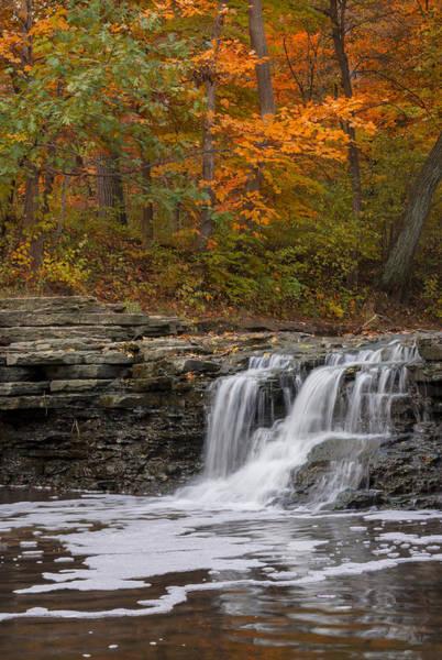 Photograph - Sawmill Creek 2 by Larry Bohlin