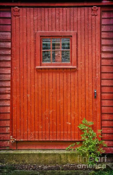 Photograph - Sawmill Door by Debra Fedchin