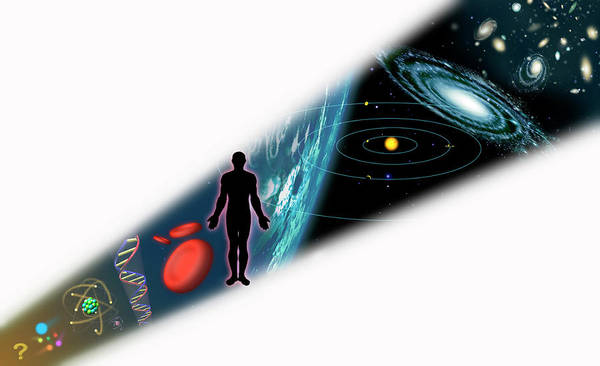 Wall Art - Photograph - Scale Of The Universe by Mark Garlick/science Photo Library