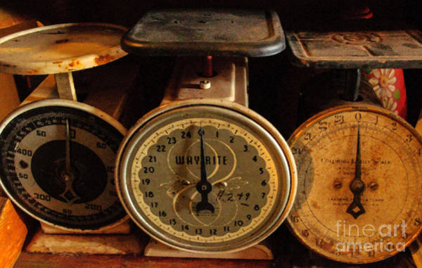 Photograph - Scales II by Tikvah's Hope