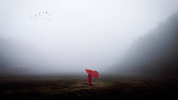 Red Mountain Photograph - Scarecrow by Dominic D??hncke