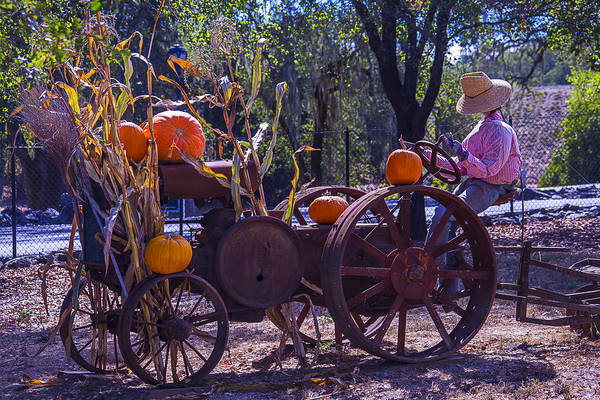 Wall Art - Photograph - Scarecrow Sitting On Tractor by Garry Gay