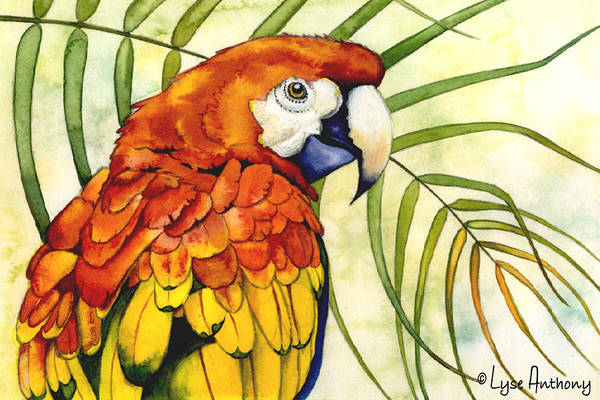 Tropical Painting - Scarlet by Lyse Anthony