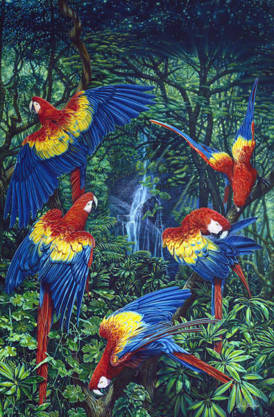 Wall Art - Painting - Scarlet Macaw Jungle by JQ Licensing