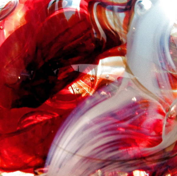 Photograph - Scarlet Swirls Abstract by Angela Rath