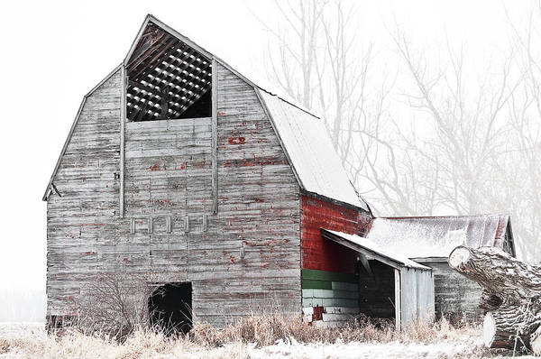 Tin Roof Wall Art - Photograph - Scars by Matthew Blum