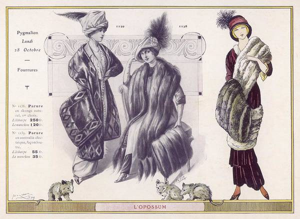 Fur Coat Drawing - Scarves & Flat Muffs In Possum  Fur by Mary Evans Picture Library