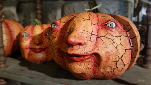 Photograph - Scary Pumpkins by Diana Haronis