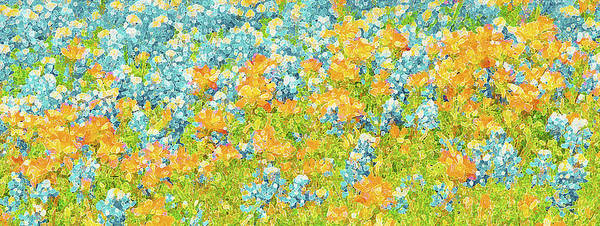 Texas Bluebonnet Digital Art - Scattered Impressions Bold Wildflowers  by Pamela Smale Williams
