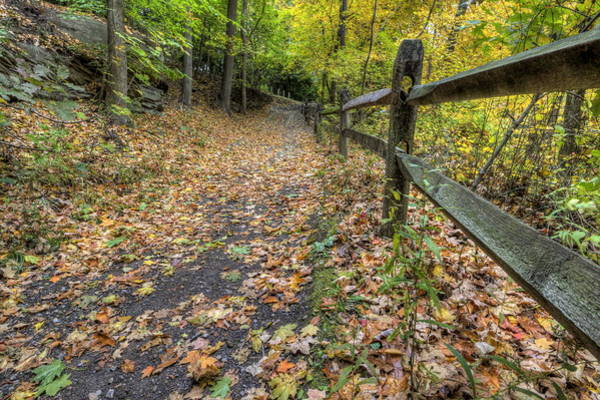 Photograph - Scene In Mill Creek Park  by David Dufresne