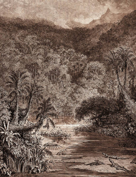 Dor Drawing - Scenery On The Mississippi by Litz Collection