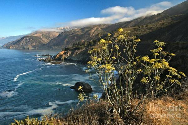 Photograph - Scenic At Big Sur by Adam Jewell