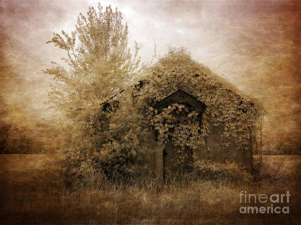Wall Art - Photograph - Scenic Images From Rural Monroe County Alabama Shrouded In Mystery  by Heinz G Mielke