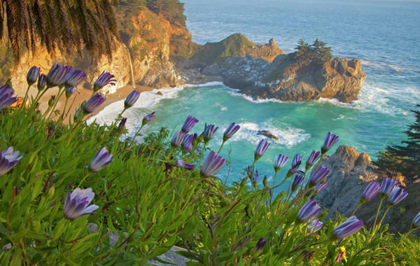 Big Sur Photograph - Scenic Mcway Falls Tumbles by Chuck Haney