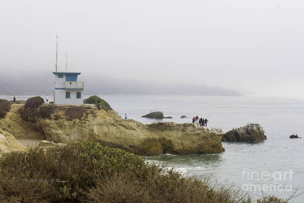 Photograph - Scenic Ocean View by Richard J Thompson