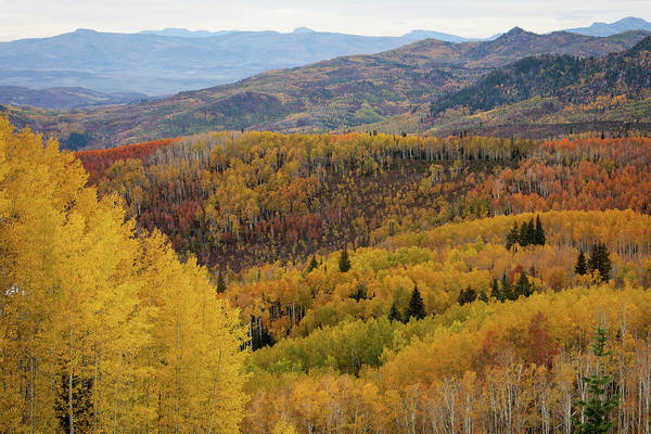 Steamboat Springs Photograph - Scenic Overlook With Fall Colors by Karen Desjardin