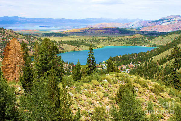 Photograph - Scenic View In June by Adam Jewell