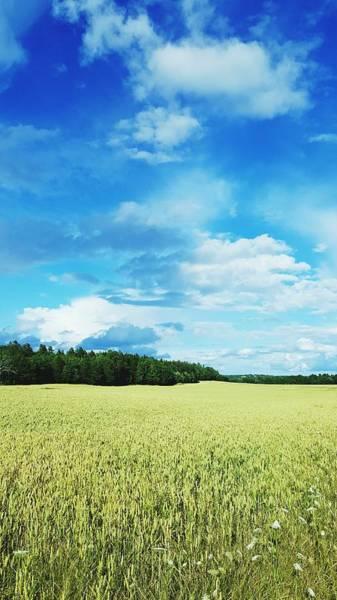 Scenic View Of Field Against Cloudy Sky Art Print by Jonas Rask / EyeEm