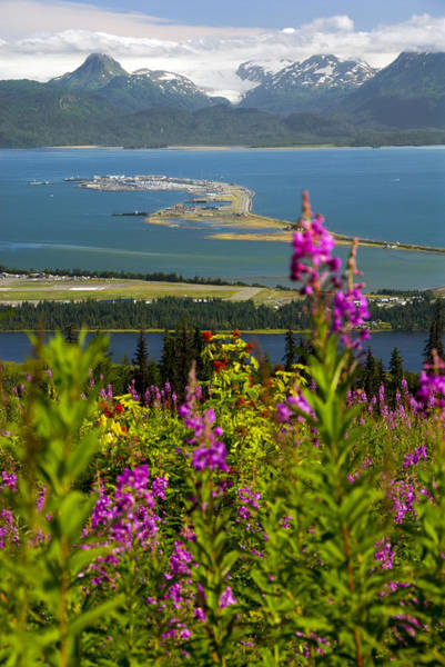 Scenic View Overlooking The Homer Spit Art Print