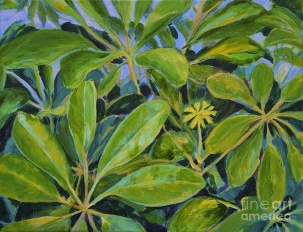 Painting - Schefflera-right View by Gail Kent