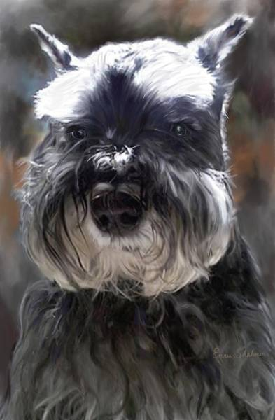 Wall Art - Painting - Schnauzer Portrait by Portraits By NC