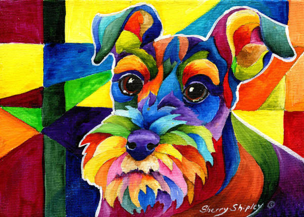 Painting - Schnauzer by Sherry Shipley