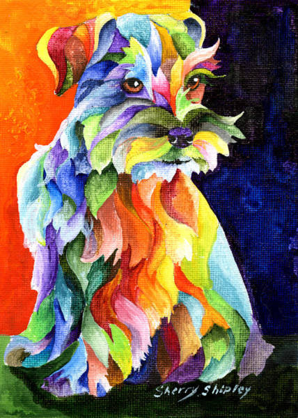 Painting - Schnauzer Too by Sherry Shipley